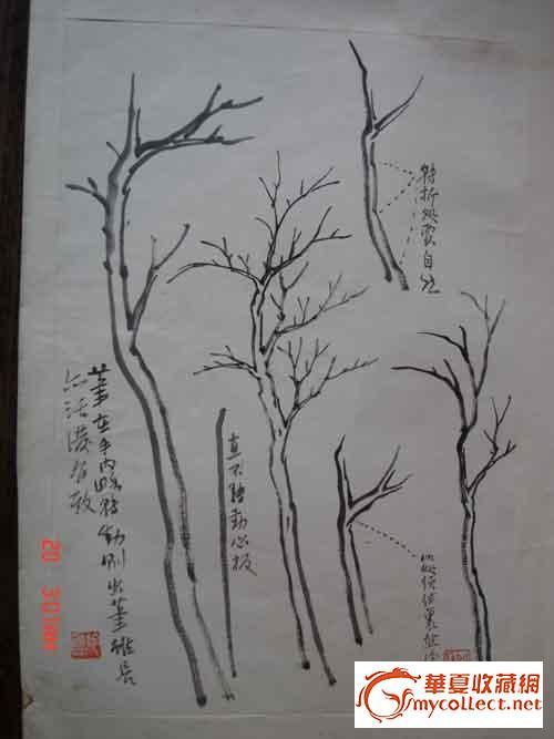 教学图示 手绘
