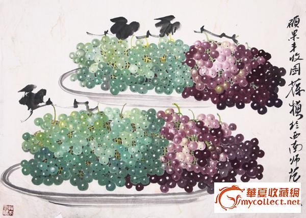 苏葆桢葡萄