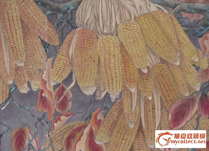 玉米工笔画步骤图片