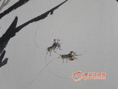 蝶蜻蜓蜂螳螂蝉蟋蟀蝈蝈其他工虫花卉册页