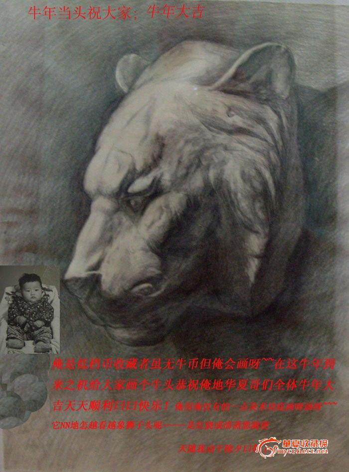 狮子头部素描画法步骤