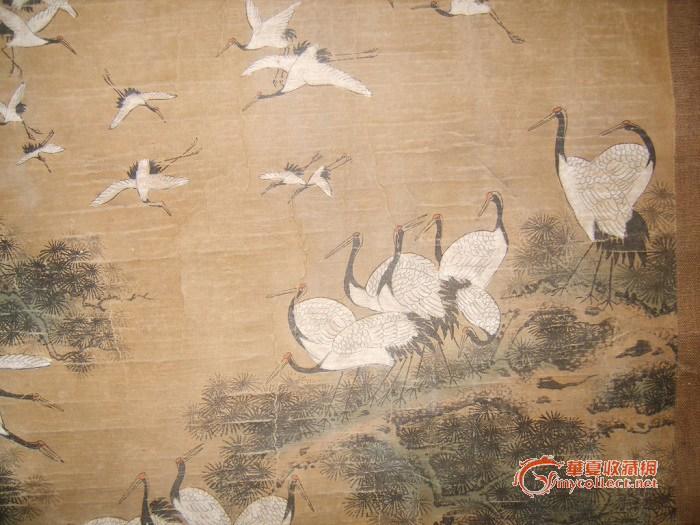 飞舞的鹤 国画图片