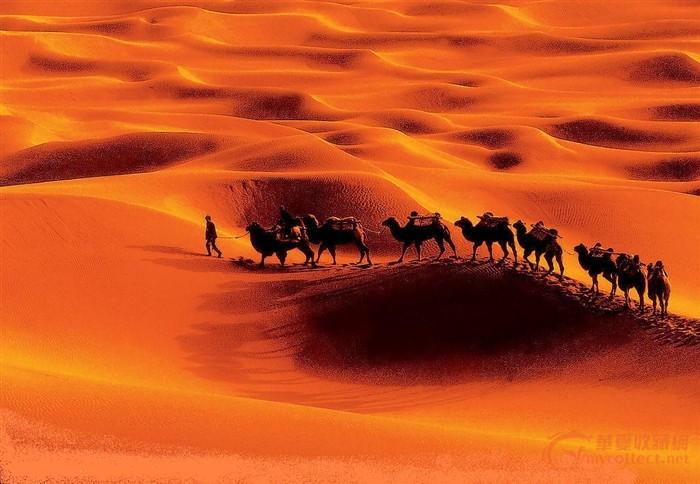 一個可愛的胡人手里緊緊的握住木鞍,跟著駝鈴的聲音在沙漠中行走.