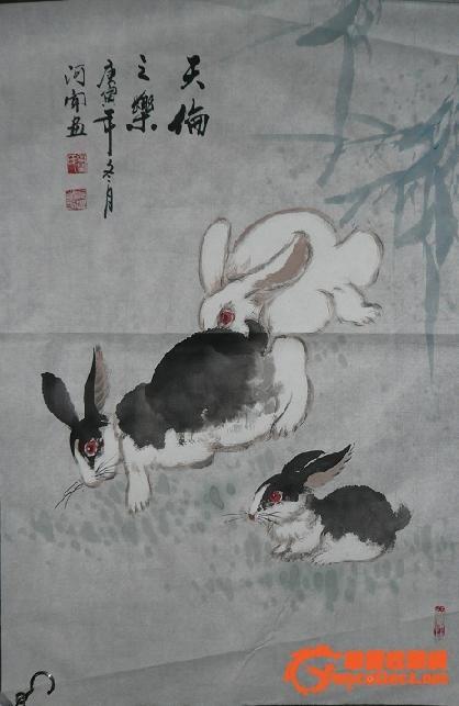 画兔子-图1