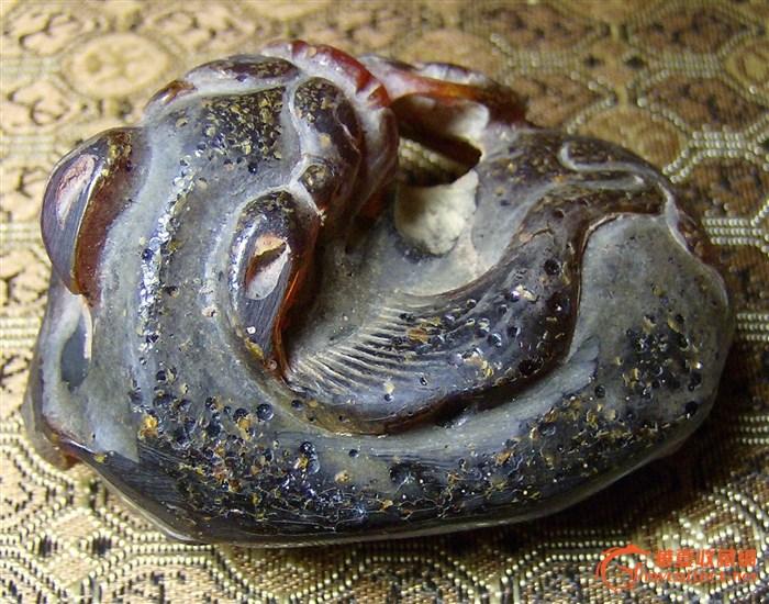 动物 蛇 700_550