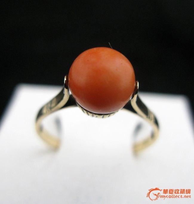 18k黄金镶嵌天然红珊瑚戒指,珠子光润,饱满,颜色纯正.