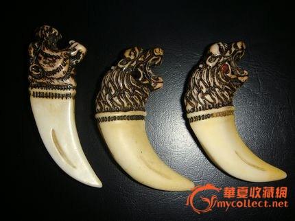 藏族人相信,狼是凶猛顽强的动物,而它身上最坚固的牙齿,则蕴藏着一种