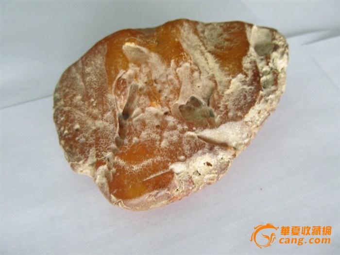 波罗的海蜜蜡原石 高清图片