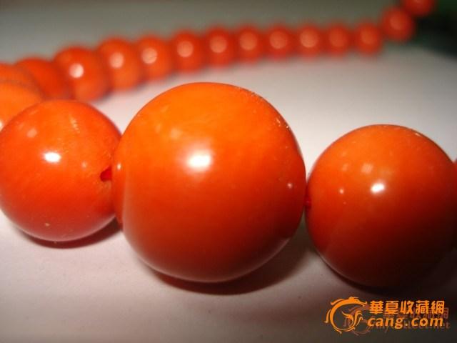 【PK】18.2毫米红珊瑚项链