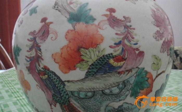 凤穿牡丹图片