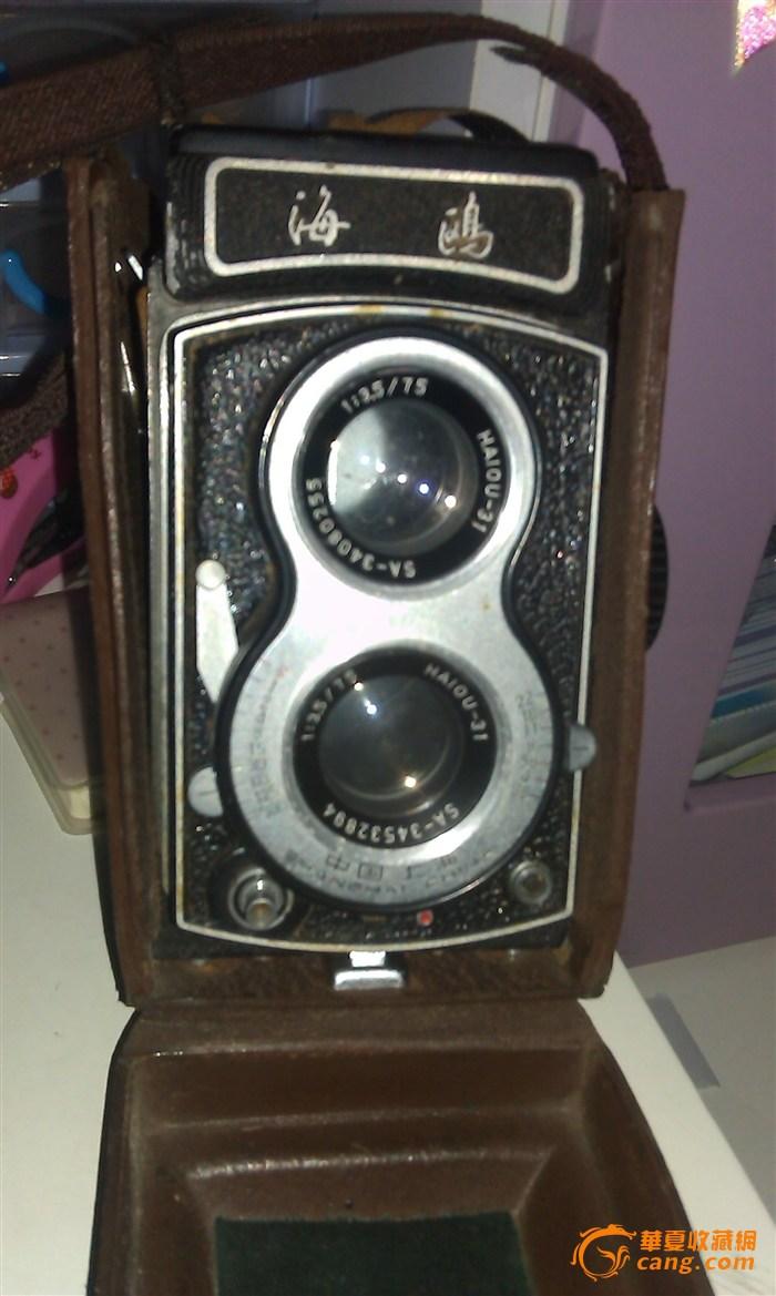 古老海鸥相机图片