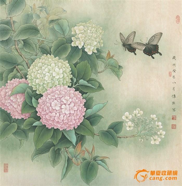 中国工笔画 绣球凤蝶