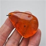 天然波罗的海水滴形琥珀坠(15.2g)