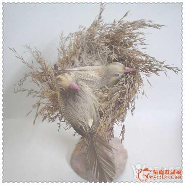 鸟巢是干草造的,两只小鸟是用羽毛制成,树杆的底座是泥塑,造型生动趣味,形态仿生.高15厘米   特别说明:鸟及鸟巢存在与图五弹弓无关.如有联想纯属巧合.   保护自然人人有责.